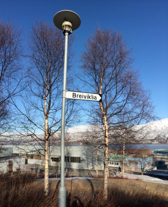 Breivik1